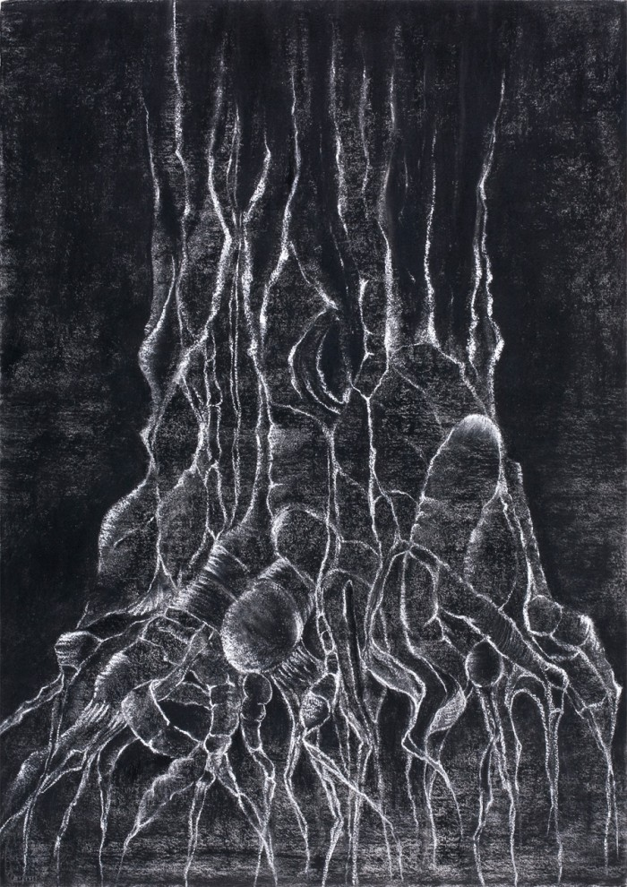 I want to know Everything (2), Charcoal & chalk on paper, 101.6 x 76.2cm, 2012