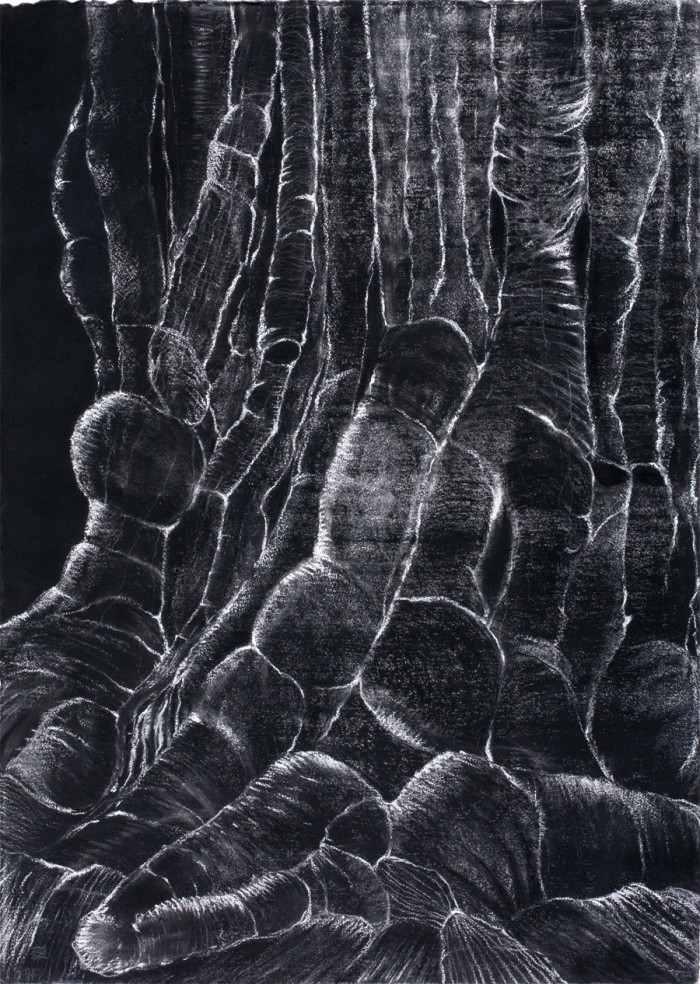 I want to know Everything (3), Charcoal & chalk on paper, 101.6 x 76.2cm, 2012